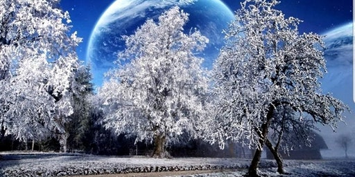 Winter Magic Mediumship Gallery