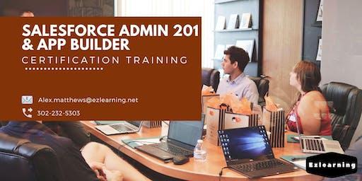 Salesforce Admin 201 and App Builder Certification Training in Chibougamau, PE