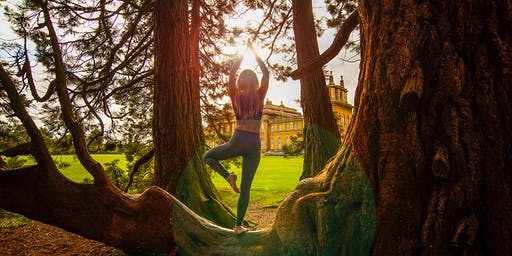 Yoga (AM) - Blenheim Palace