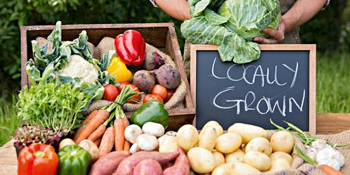 Healthy Florida Lifestyle:  Locally Grown in Marion County