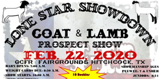 2020 Lone Star Showdown Prospect Show Lamb & Goat