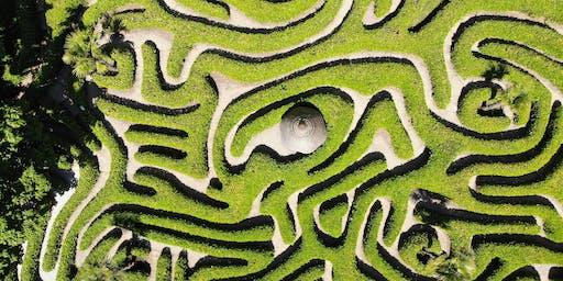 Nel Labirinto della Mente