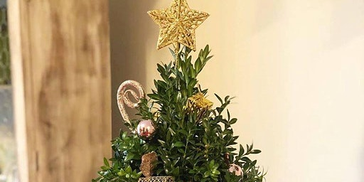 Holiday Boxwood Tree Workshop