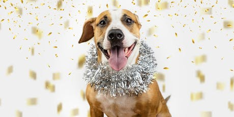 Holiday ROMP with Shelter Dogs! tickets