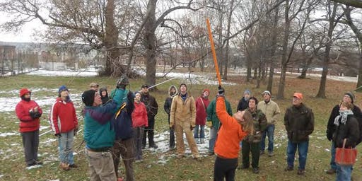 Baltimore TreeKeepers202: Tree Pruning for Leadership Certification