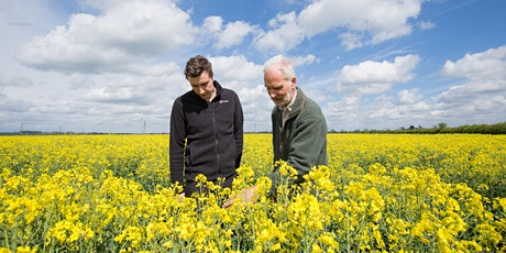 United Oilseeds Marketing & AHDB OSR Conference tickets