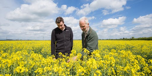 United Oilseeds Marketing & AHDB OSR Conference