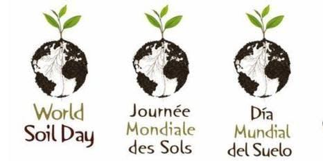 The HERD Foundation World Soil Day Dinner