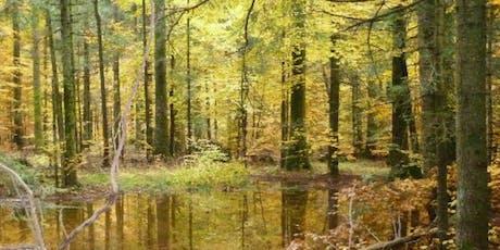 Escursione ai laghi di Fužine (posti limitati) • WWF Trieste biglietti