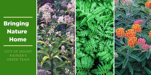 Native Plants with Linda DeGraf