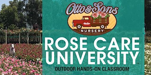 Rose Care University 2020