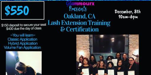Oakland Lash training & Certification