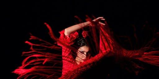 Show flamenco en Sevilla