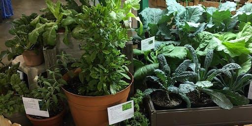 2019 Fair Plants