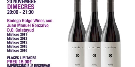 Cata Vertical Vino Místicos, D.O. Calatayud entradas