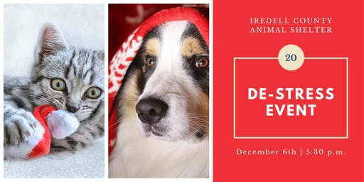De-Stress Event with Iredell County Animal Services