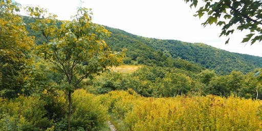Taconic Hiking Club's End-to-End Challenge