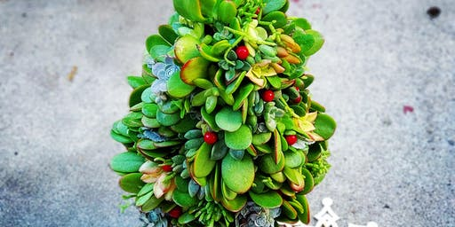 Succulent Christmas Tree Workshop at Thorn Brewing (Mission Hills)