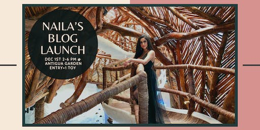 Naila's Blog Launch Party + Ryan House Toy Drive
