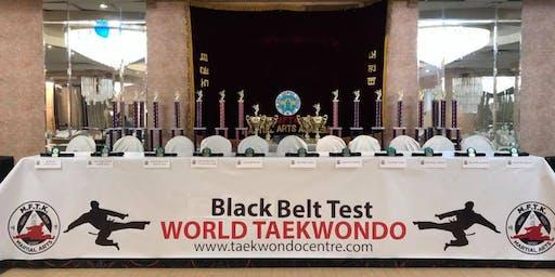 Taekwondo 22nd Annual Black Belt Test