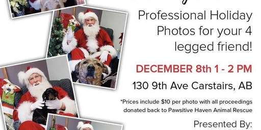 Santa photos with pets!