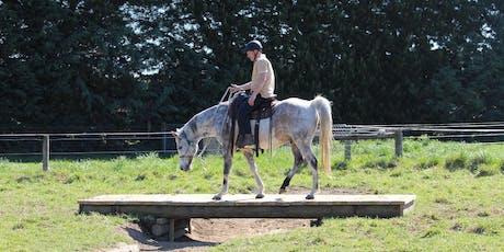 Horse Adventure Park session tickets
