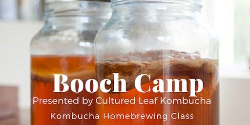 Booch Camp 101 - Kombucha Homebrewing Class