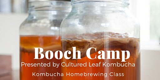 Booch Camp 101 - Kombucha Homebrewing Class
