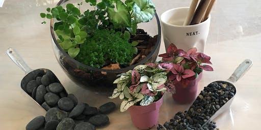 Terrarium Building Workshop w/ Tropical Plants