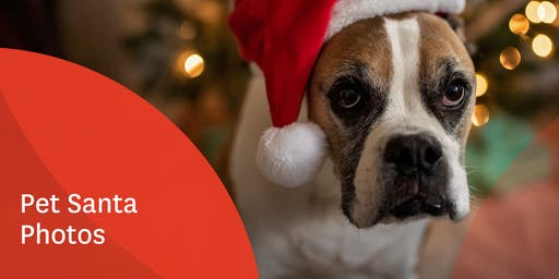 Stockland The Pines Pet Santa Photos