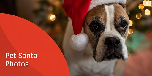 Stockland Wendouree Pet Santa Photos