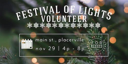 Volunteer for Festival of Lights