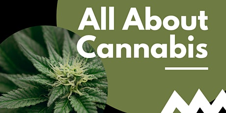 HiVE Lunch and Learn: The Fundamentals of Cannabis tickets