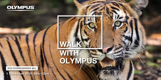 CAPTURE WITH OLYMPUS - ZOO PHOTOGRAPHY (KL)