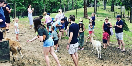 Christmas at The Lyell Deer Sanctuary Session 2
