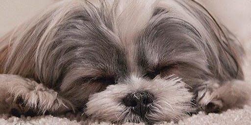 Who Needs Better Sleep?