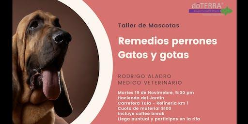 """Taller de mascotas """" Remedios Perrones, Gatos y Gotas"""""""