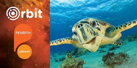 Under the Sea Wildlife tickets