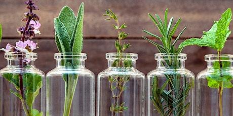 Botanix Introduction to Natural Skincare Formulation tickets