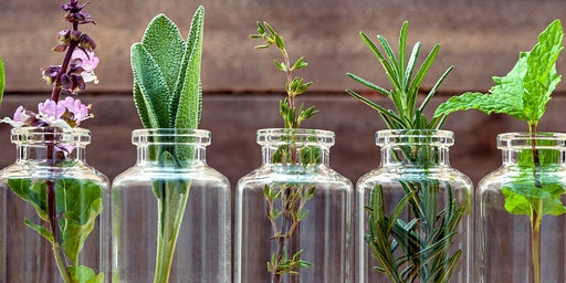 Botanix Introduction to Natural Skincare Formulation