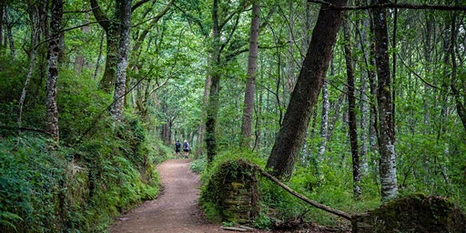 Walking Holidays Info Night - Camino, Scotland, Japan and Via Francigena