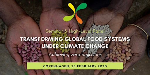 Transforming global food systems under climate change: Achieving zero emissions