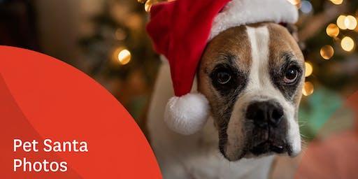 Santa Paws Pet Photography