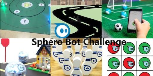 Sphero Bot Challenge Camp (Age 8-11)