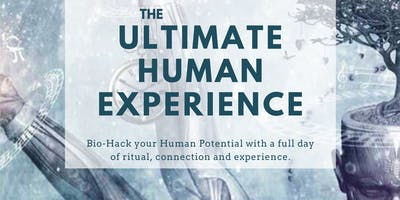 The Ultimate Human Experience - A Journey into Consciousness