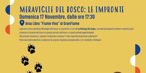 Meraviglie Del Bosco: le Impronte! @FIUMEVIVA