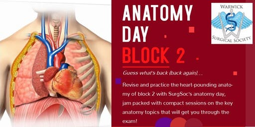 WMS Block 2 Anatomy Day