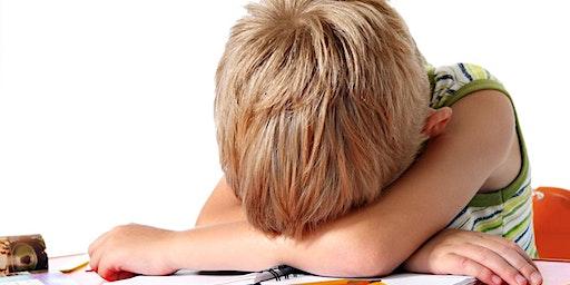 DUBLIN BRAINCALM™   Preschools,SNAs, SETs, Parents