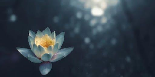 Yoga + Yoga Nidra - Slowing Down As We Step Into the Holiday Rush!