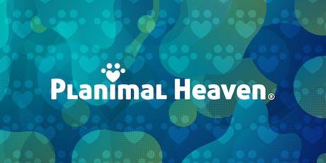 Planimal Heaven Fest 2019 boletos